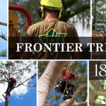 FRONTIER TREE SERVICES 2